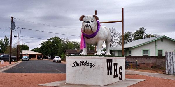 bulldogs-basketball-team-winslow