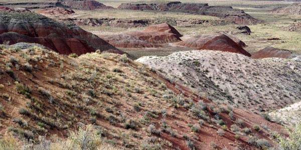 sabbatical-im-sattel-painted-desert-5